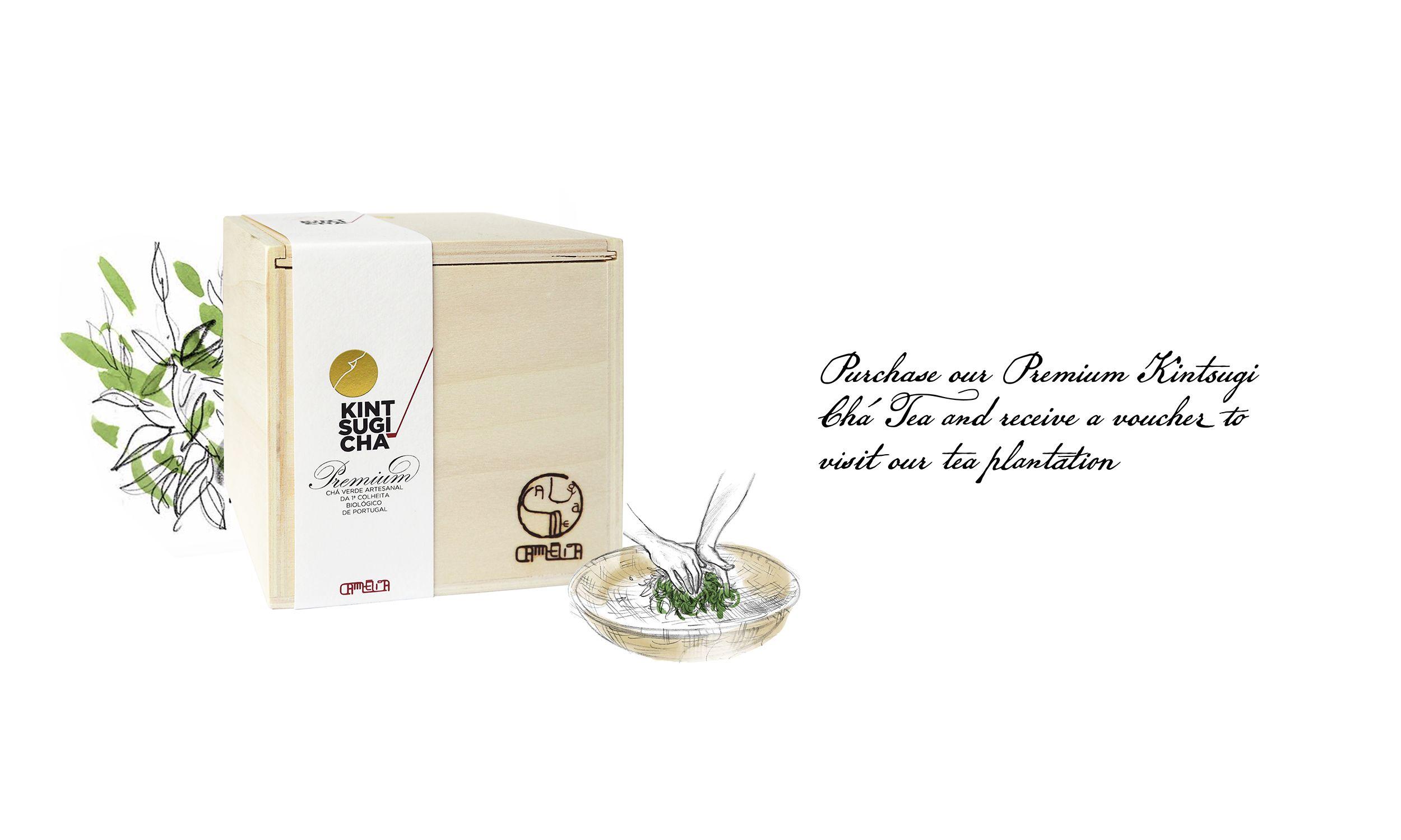 Chá Camélia